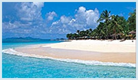 The Grenadines Palm Island
